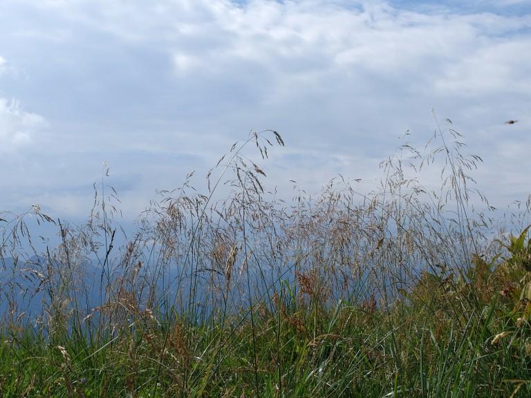 Großer Höhenweg Brauneck