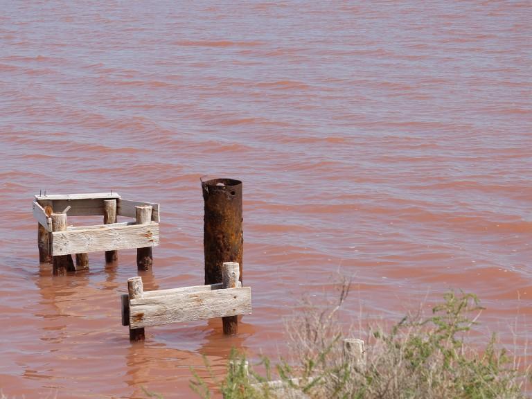 Saline bei Aigues-Mortes