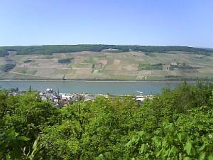 Rhein 09.05.2008