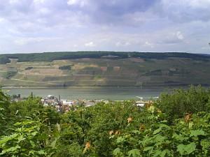 Rhein 23.05.2008