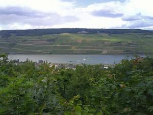 Rhein 13.06.2008