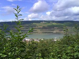 Rhein 08.08.2008