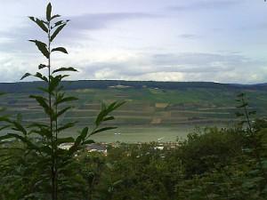 Rhein 22.08.2008