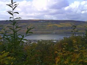 Rhein 17.10.2008
