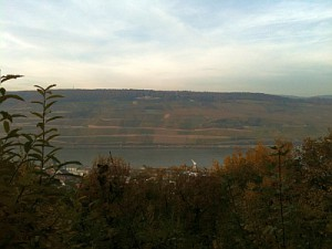 Rhein 29.10.2010