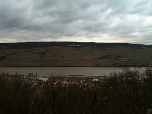 Rhein 14.01.2011
