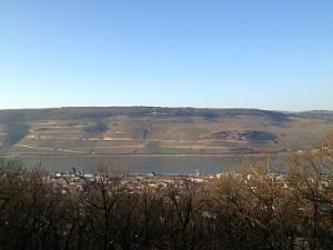 Rhein 02.03.2013