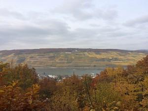 Rhein 30.10.2015