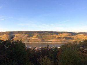 Rhein 31.10.16