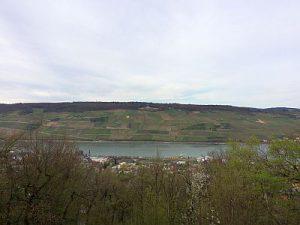 Rhein 31.03.17