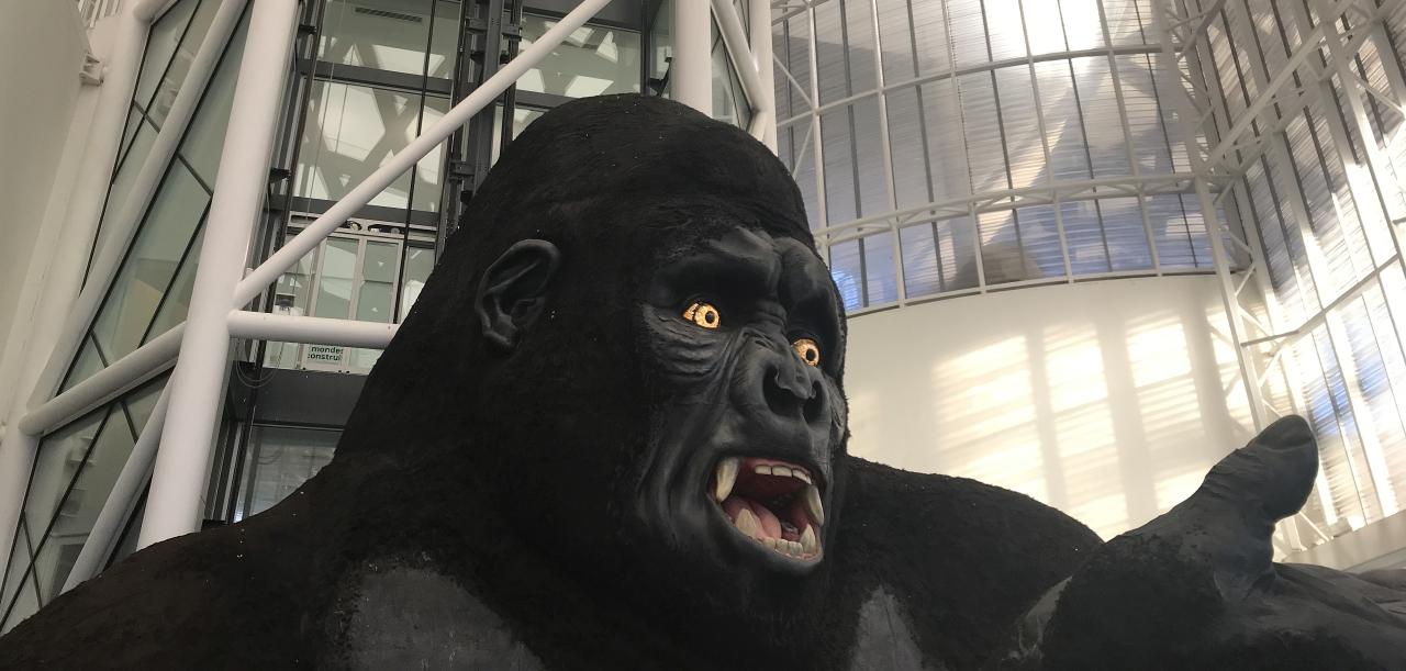 King Kong im Centre Pompidou Metz