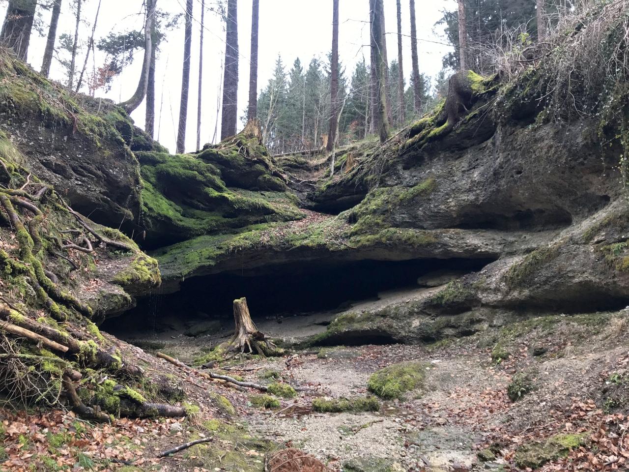 Dachshöhle