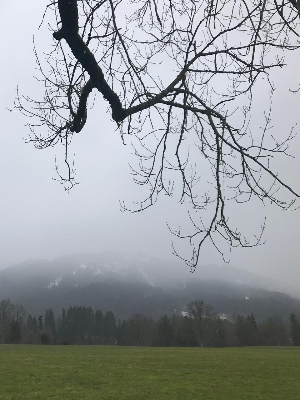 Blomberg im Nebel